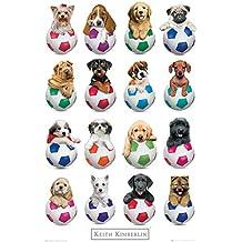 Empire merchandising 672124 Keith Kimberlin, perritos fútbol, diseño de perros cachorros de fútbol póster de cartel de, de tamaño de 61 x 91,5 cm
