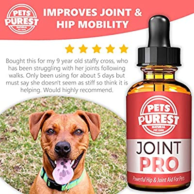 Pets Purest 100% Natural Joint Aid For Dogs, Cats & Pets - Powerful Hip & Joint Care Supplement - Supports Stiff Joints Improves Mobility & Repairs Damage - Dog Hip Joint Pain Relief by Pets Purest