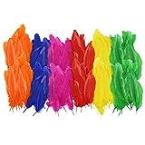 Indianer-Federn Bunt, 2er Pack ca. 15 cm Lang ✓ je Beutel ca. 110-120 Stück ✓ Naturfedern Ver. Farben ✓ Bastelfedern Basteln Verzieren Dekorieren ✓ farbenfrohe Faschingsfedern | trendmarkt24-298881