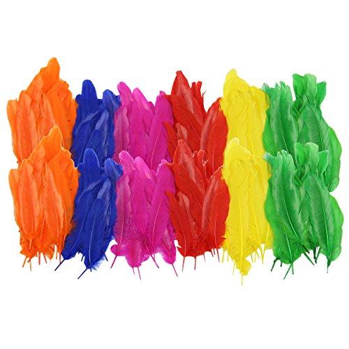 Kostüme Farbenfrohe (Indianer-federn bunt, 2er Pack ca. 15 cm lang ✓ je Beutel ca. 110-120 Stück ✓ Naturfedern ver. Farben ✓ Bastelfedern Basteln Verzieren Dekorieren ✓ farbenfrohe Faschingsfedern | trendmarkt24 -)
