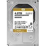 Western Digital WD4002FYYZ- Disco Duro Interno, 4 TB, Color Oro