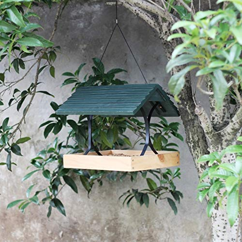 Ailihan Vogelfutterspeicher Große Kapazität Massivholz Umweltschutz Vogelbeobachtung