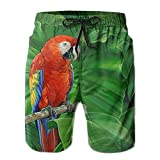 Mens Parrot Animal Floral Surfing Neon Shorts Beach Shorts Trunks