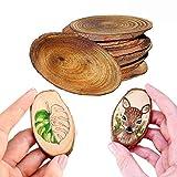 Fette di legno naturale(10 pezzi) Ovale, 9-11cm - Incompiuto Rustico Dischi di legno vuoti, 5 mm di spessore, Round di legno per il fai da te Decorazione di nozze, Abbellimenti dell'artigianato