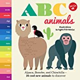Little Concepts: ABC Animals: Alpaca, Bonobo, and Chinchilla - 26 cool new animals to discover