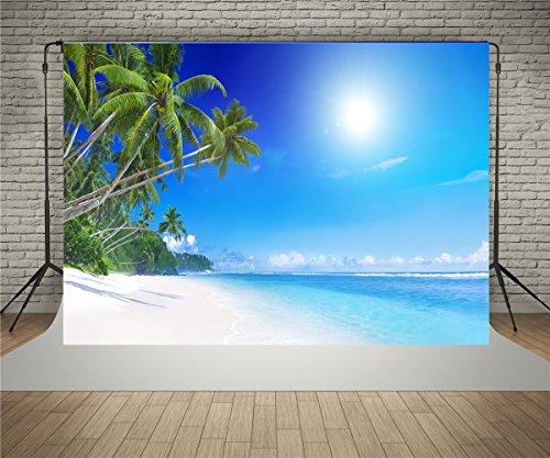 Kate - Fondo de fotógrafo para boda, fiesta, playa, fondo de verano, fotografía temática de 3 x 2 m