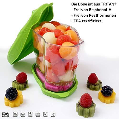 Frischhaltedose Kühldose Lunchbox mit Kühlakku und Kühltasche! 0,9 L, 6 Std. Kühlleistung (BPA- und Resthormonenenfrei)