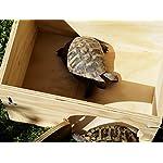 blitzen deluxe ground turtle house with floor Blitzen Deluxe Ground Turtle House with Floor 51Q 2B27fwpkL