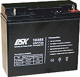 DSK 10365 - Batería plomo tecnología Gel 12V 17 Ah, Negro