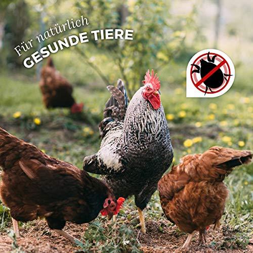 AniForte Milben-Stop Spray 1 Liter – Naturprodukt für Hühner - 5