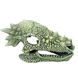 Amtra A8011752 Cráneo de Dragón