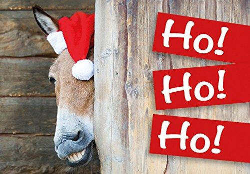 Kühlschrankmagnet Magnet Magnetschild Esel, Pferd Weihnachten