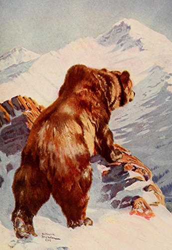 The Poster Corp Belmore Browne - Mammals of America 1917 Alaska Brown Bear Kunstdruck (60,96 x 91,44 cm)