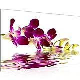 Bilder Blumen Orchidee Wandbild Vlies - Leinwand Bild XXL Format Wandbilder Wohnzimmer Wohnung Deko Kunstdrucke 70 x 40 cm Violett 1 Teilig -100% MADE IN GERMANY - Fertig zum Aufhängen 200014a