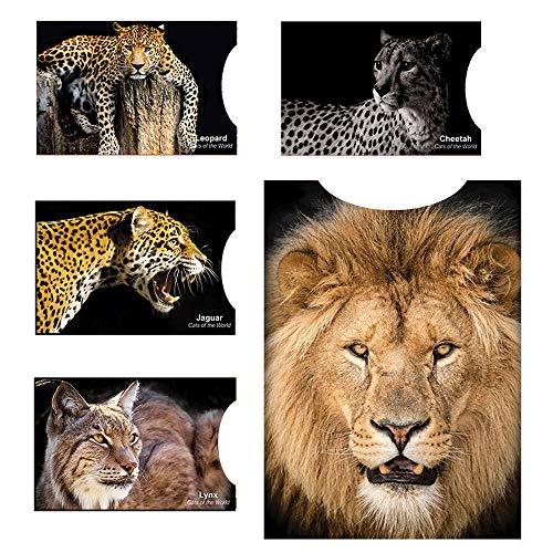 Matana [12 Pack] RFID Blocking Hüllen - Designer Set, für Kreditkarte & ID Schützhüllen, ideal für Portemonnaie/Passschutzhülle - Schutz für kontaktlose RFID & NFC Radio Chips - Wunderschönes Katzenmotiv