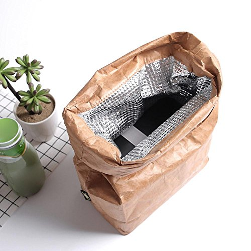 594608773211 6L Brown Paper Lunch Bag, Reusable Lunch Box Insulated Durable Thermal  Kraft Paper Bag Covered with Aluminum Film