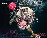 Hunde unter Wasser 2018: Wandkalender