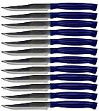 coltelli da tavola per bistecca in acciaio inox lucidato con manico in plastica, forma appuntita, posate occidentali per cucina/hotel/ristorante/mensa/scuola/ecc blu 12 pezzi