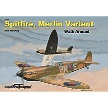 Spitfire, Merlin Variant Walk Around