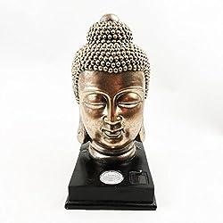Luz solar con cabeza de Buda de Kingfisher