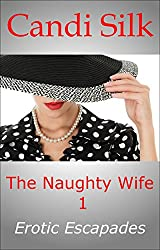 The Naughty Wife 1: Erotic Escapades