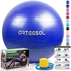 arteesol Balón de Ejercicio Anti-explosión, 45cm / 55cm / 65cm / 75cm Fitness Yoga Ball Estabilizador de balón de Equilibrio Resistente con Bomba rápida para Core Force