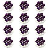 Schmuckanthony Brautschmuck Haarschmuck Curlie Curlies Swirl Bridal Haarnadeln Spiralen Blumen Kristall Purple Violett 1,1 cm Durch. 12 Stück