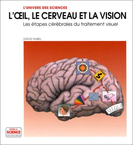L'OEIL, LE CERVEAU ET LA VISION. Les étapes cérébrales du traitement visuel
