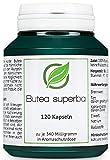 Butea superba - 120 Kapseln zu je 340 Milligramm in Aromaschutzdose