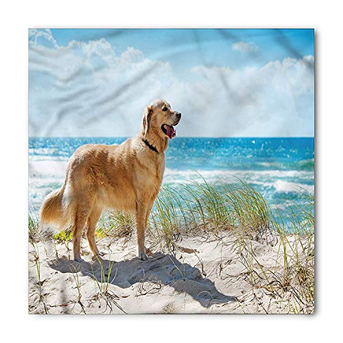 LULABE Dog Lover Bandana, Golden Retriever on Sand, Unisex Head and Neck Tie,Unisex Bandana Head and Neck Tie Neckerchief Headdress Silk-Like 100% Polyester(size:M) -