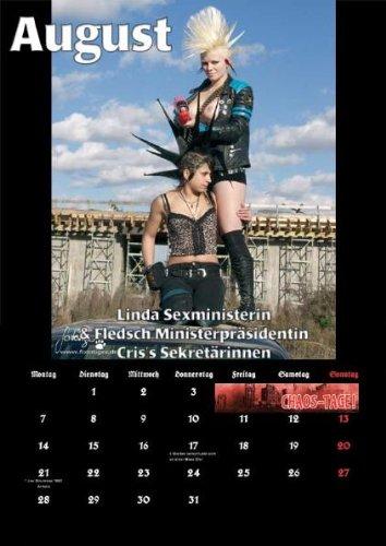 Punkkalender - Sex and Violence 2012: gemischter Kalender (Punks&Punketten)