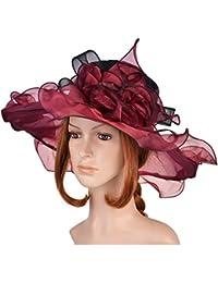 VBIGER Vintage Chapeau de Soleil Femme avec Large Bord en Organza pour Fête du Thé Mariage