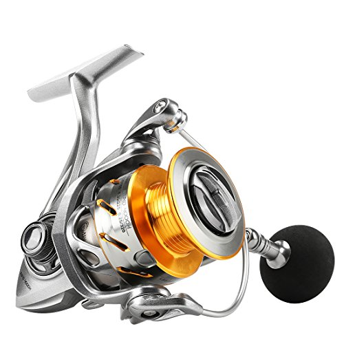 SeaKnight Rapid Fishing Reel Anti-Corrosion Sea Saltwater Spinning Reel Max Power 15kg