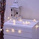 INtrenDu Lichterkette für innen warmes Weiß Blumenmotiv