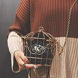 Coomir Borsa A Tracolla con Ricamo di Uccelli con Stile Birdcage Mini Tracolla in Metallo per Donna Nero