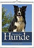 Literarischer Hunde-Kalender 2020: Wochenkalender