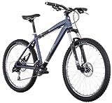 DiamondBack Response Sport Mountain Bike (Modell 2011, 26Räder), matt blau