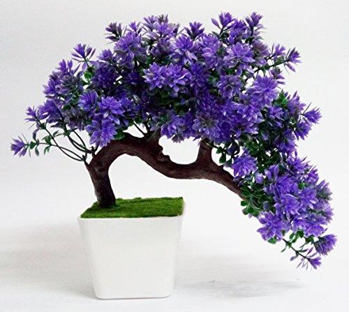 HYPERBOLE Wild Plant Artificial Plant with Pot(27cm)