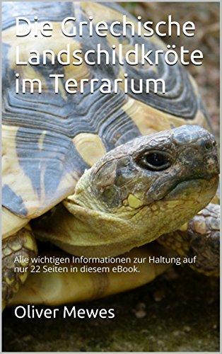 Die Griechische Landschildkröte im Terrarium: Alle wichtigen Informationen zur Haltung & Pflege auf nur 22 Seiten in diesem eBook.