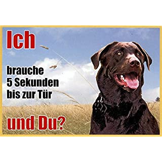 Warning Sign Labrador Dark Brown 063 (21 x 15 cm Laminated Waterproof Design: Ich Brauche 5 Sekunden bis zur Tür und du. Can be used indoors and outdoors