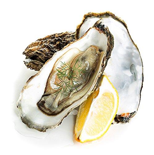 Poissonnerie com - 1 douzaine d'huîtres fines de Bretagne N°1