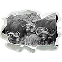 grande Cape Buffalo mandria, di carta 3D