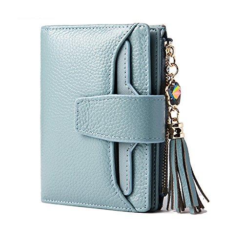 in Brieftasche Große Kapazität Leder Portemonnaie mit 19 Kartenfächer (Blau) ()
