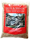 Shade Grass Seeds