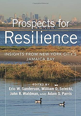 Prospects for Resilience: Insights from New York City's Jamaica Bay