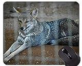 Einzigartige kundenspezifische Mausunterlage Mousepad, Raubwolf-Schnee-Mausunterlage Matte