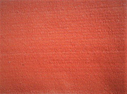AGROFLOR SOMMERSCHLUSS Balkon - Terrasse - Sichtschutz, 100{6bd103a532541140fdcba6d2ddbf8a06b794a8d374986cd5321822d352ea2403} UV-stabilisiert, mit Saum und Ösen alle 50 cm, Farbe: Terracotta, Größe: 0,9X 25 m