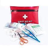 ZPL Mini Kit di Primo Soccorso, 13 Pezzi Piccolo Kit di Pronto Soccorso - Include pinzette di Sicurezza Forbici, per Viaggi, casa, all'aperto, Ufficio, Veicolo, Campeggio, Luogo di Lavoro