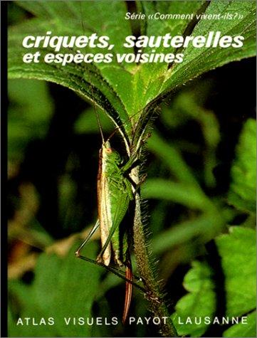 CRIQUETS SAUTERELLES 10 par Alain Guéguen