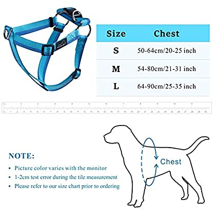 PETBABA No Pull Dog Harness, Front Clip Give Pet Choke Free Walking, Reflective Safety at Night, Step-in Vest with… 5